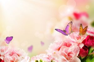 Hvad er spiritualitet?